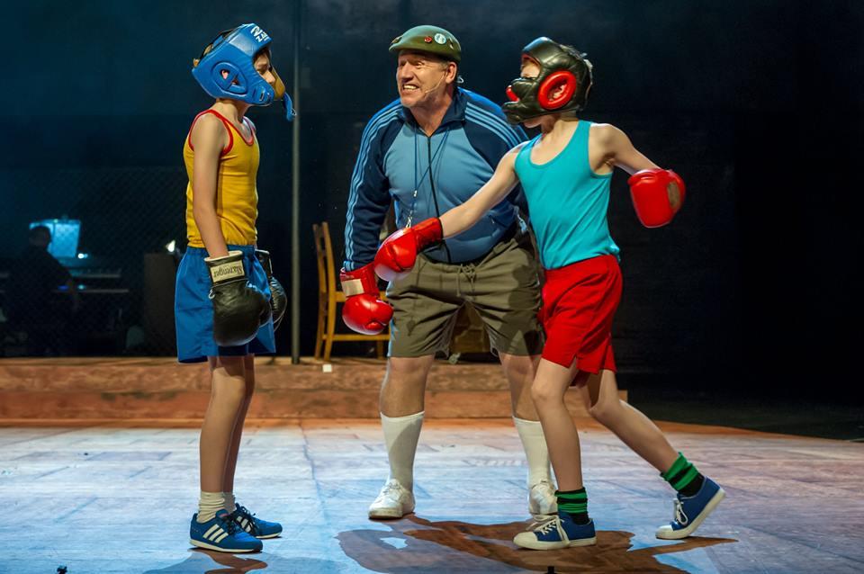 auckland-boxing-scene